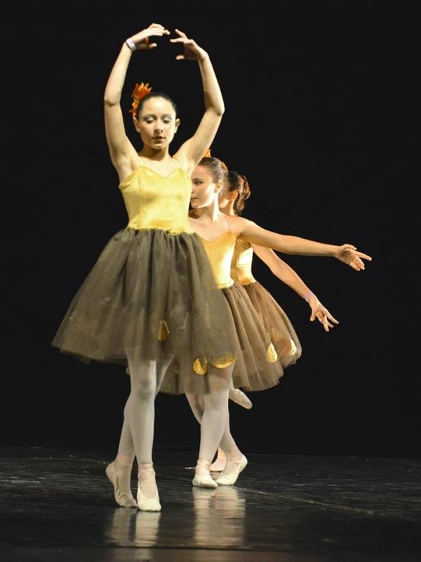 Onde Fazer Aula de Ballet Infantil Iniciante Jardim Europa - Aula de Ballet Infantil Avançado